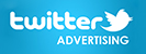 Online advertising expertise includes Twitter advertising